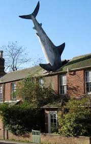 Εικόνα Καρχαρίας σε σκεπή