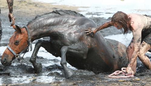 Το άλογο κλάταρε στη λάσπη